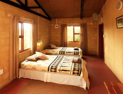 Lodge Chalet