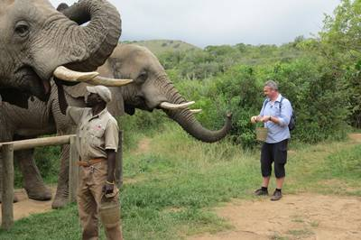 Addo Elephant Safari with Kudu Ridge guests