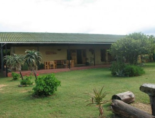 Addo Accommodation: Excellent Value For Direct Bookers