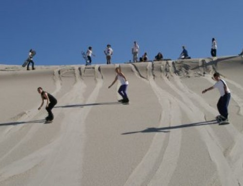 Addo Activity: Sand Boarding