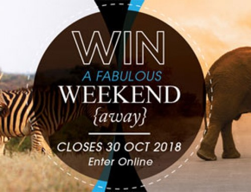 Win a Weekend Away at our Addo Lodge