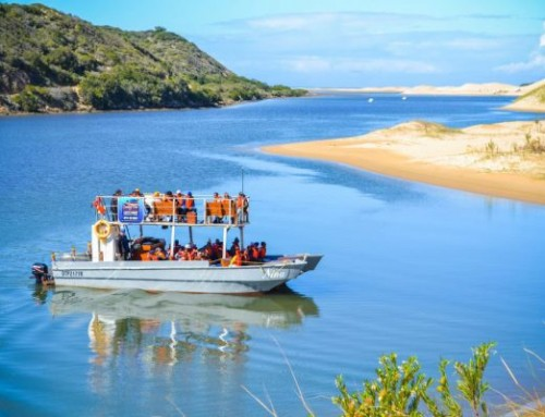 Addo Activity: Sundays River Cruise